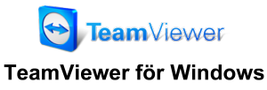 TeamViewer_Logo windows